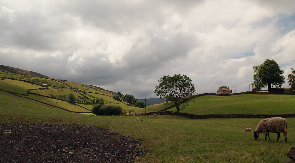 Sunday July 13th (2014) swaledale