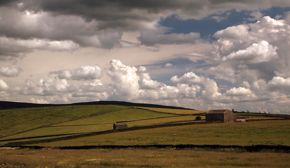 Thursday July 24th (2014) greenhow hill