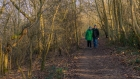 Thu 25th<br/>walk in the woods