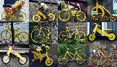 3rd: yellow bikes of yorkshire