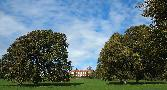 Sat 17th<br/>hinton ampner