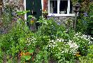 Sun 25th<br/>cottage garden